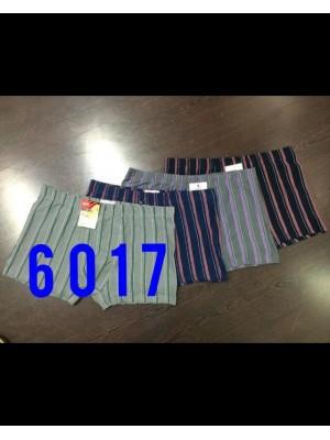 [6017] Boxers à imprimé rayures bicolores verticales